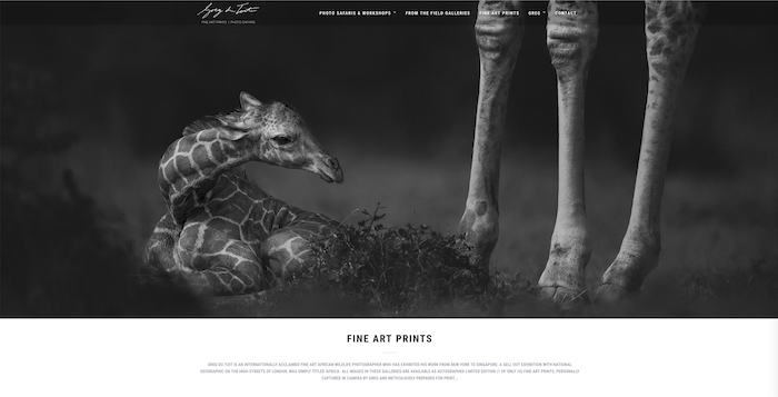 Photo of a small giraffe by Gred Du Toit