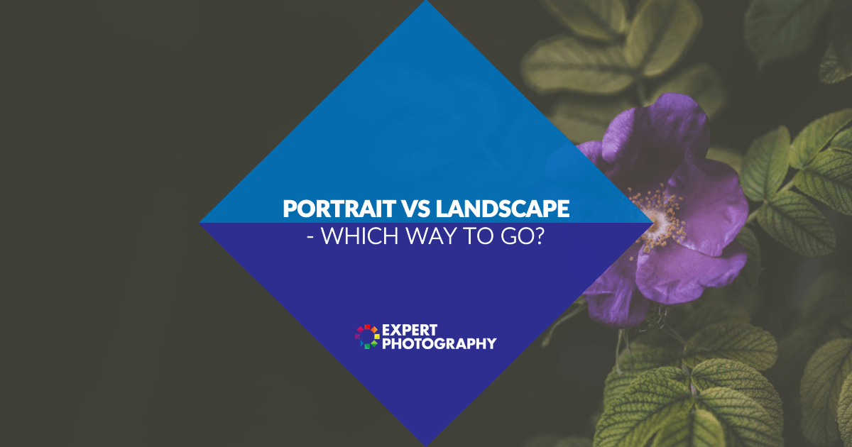 Portrait Vs Landscape Which Orientation Is The Way To Go