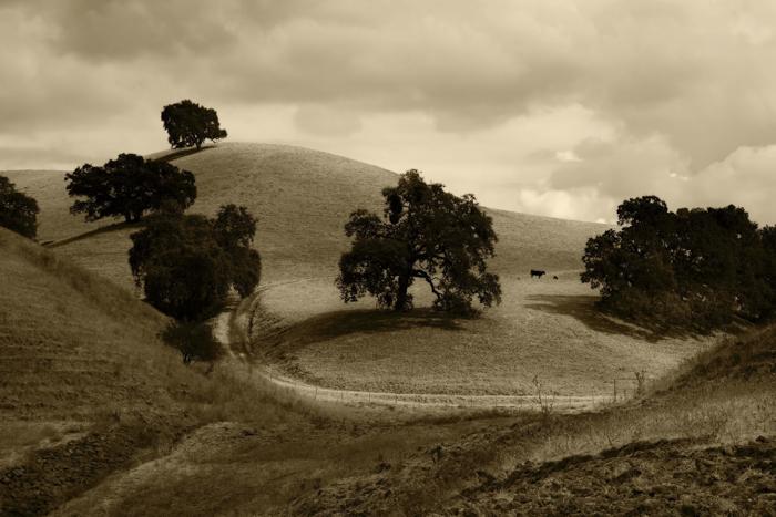 Photo of a landscape in sepia tone