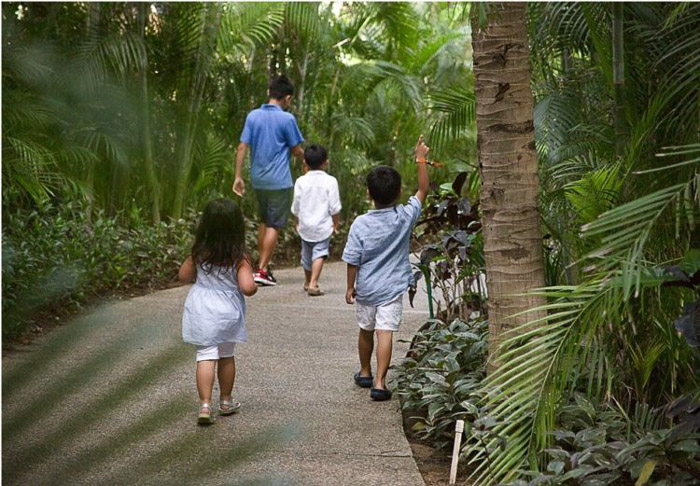 a family walking through a forest park