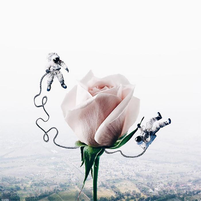 Orbit a Rose by Luisa Azevedo