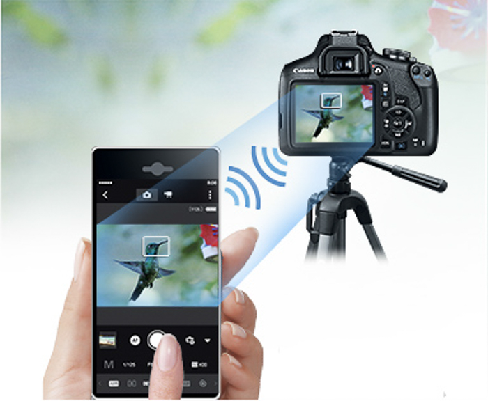 Image being taken by the camera can be seen on the smartphone screen