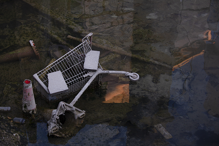 Photo of a trolley thrown away in the dump