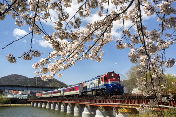 Photo of a train on a bridge on a sunny day