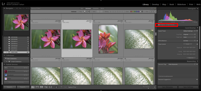 Lightroom screenshot of smart preview