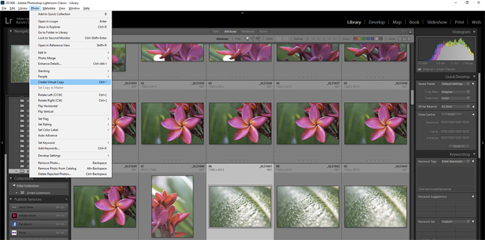 Lightroom screenshot of virtual copy