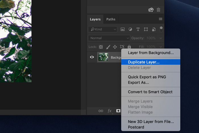a screenshot showing how to duplicate a layer in photoshop