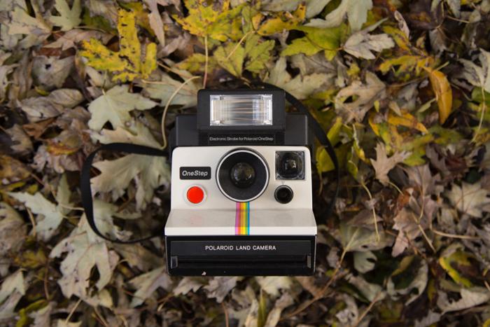 Photo of a classic Polaroid camera