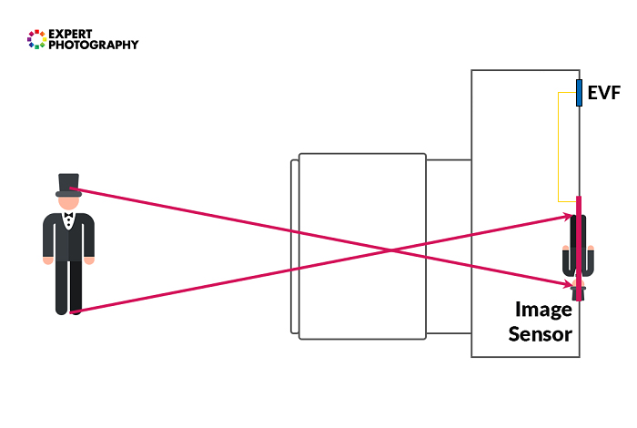 Diagram showing how the image sensor in a mirrorless camera works