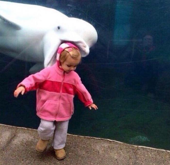 Foto de una niña con un manatí de fondo