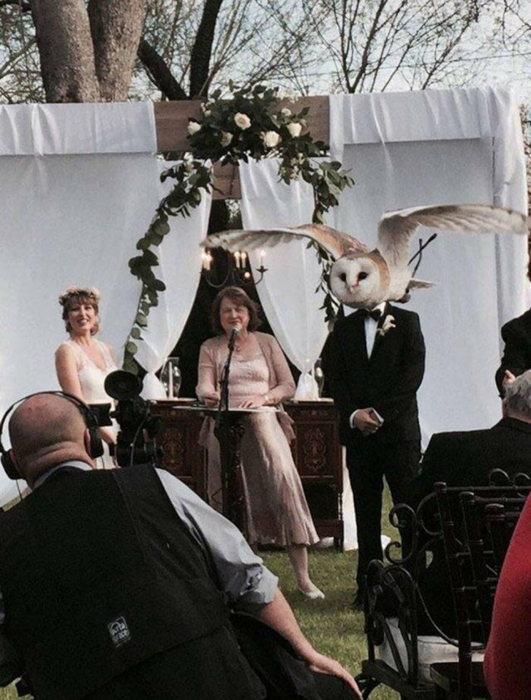Photo of an owl flying in front of the groom's head at a wedding