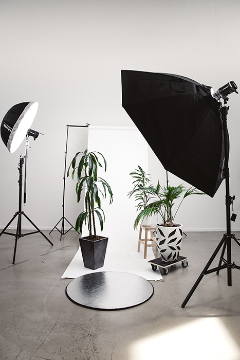Photo of a photography studio setup with plants and a white background