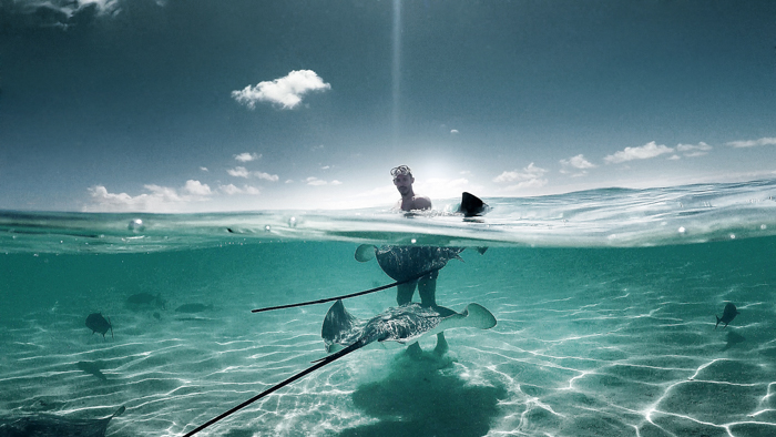 A shot of a man in the ocean surrounded by aquatic life, taken with a GoPro
