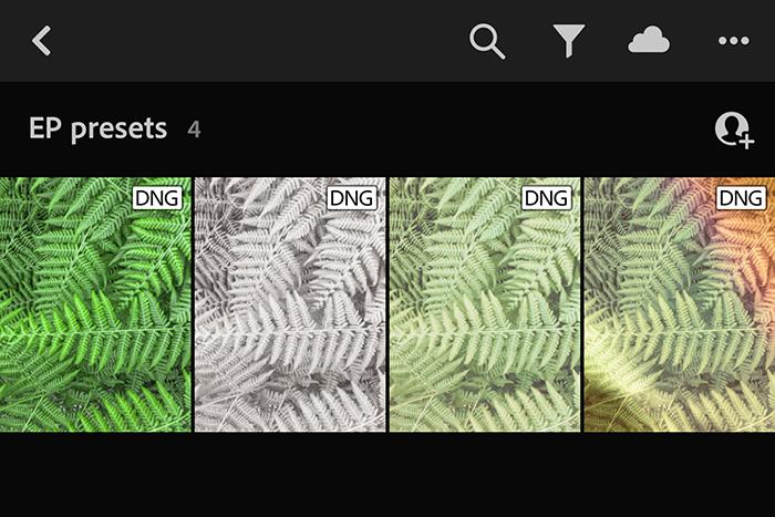 Screenshot of ExpertPhotography presets
