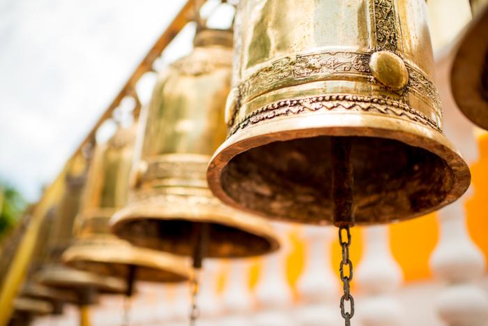 Photo of golden bells