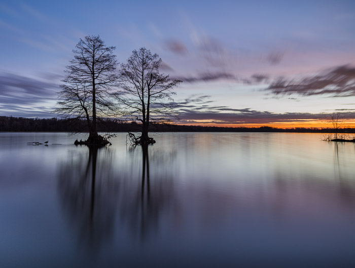 Two trees in a lake at sunset