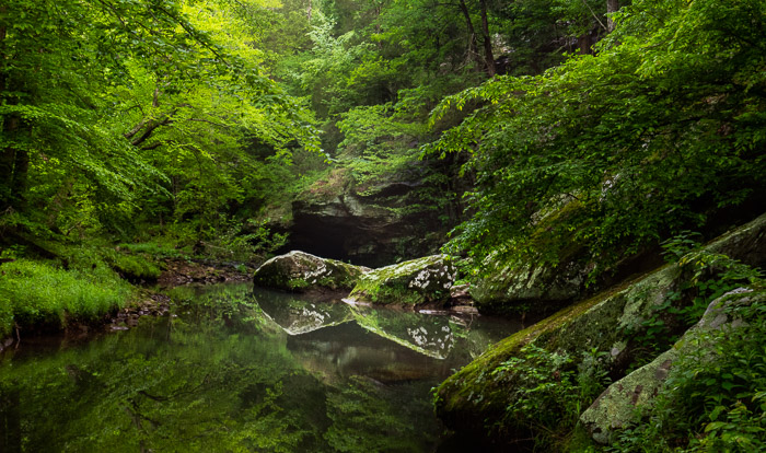 An outdoor shot of a lake in a forest with green foliage