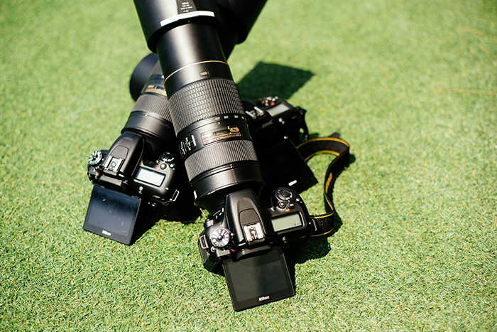 two telephoto lenses on the grass