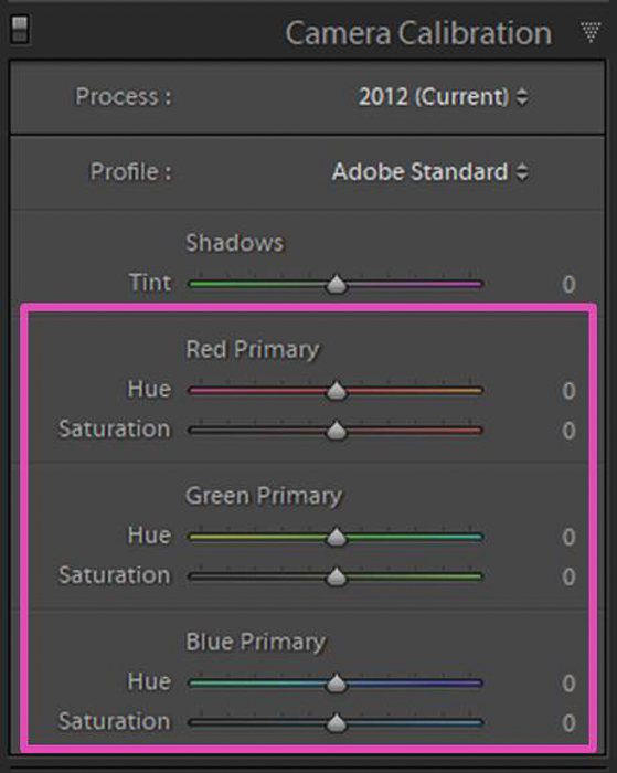 Screenshot of Lightroom camera calibration
