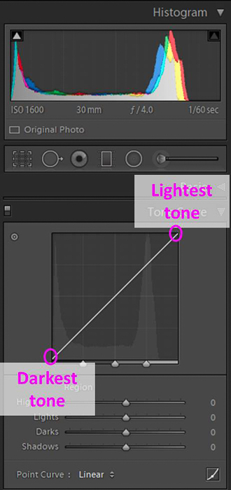 Screenshot of Lightroom tone curve