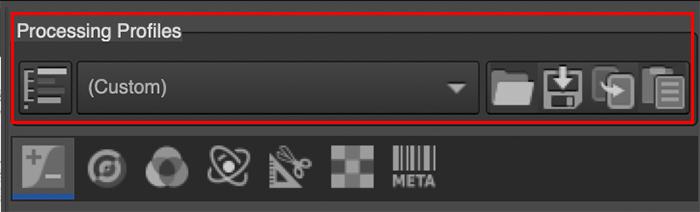 A screenshot of Processing Profile selection in rawtherapee