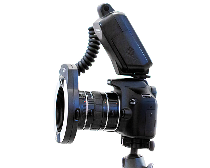 a Canon DSLR on a tripod fitted with extension tubes for macro photography