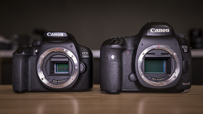 An APS-C and a full-frame Canon camera