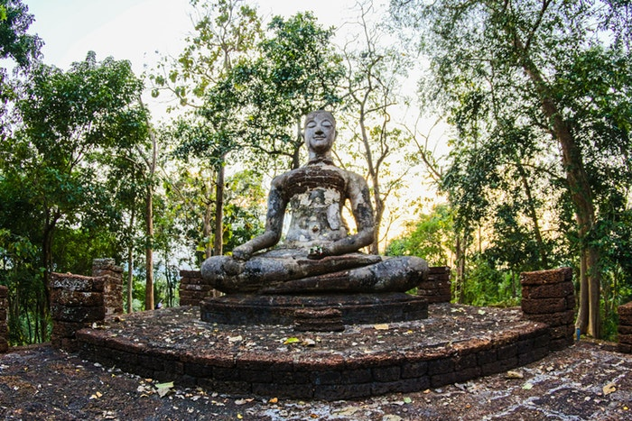 Photo of a Buddha statue
