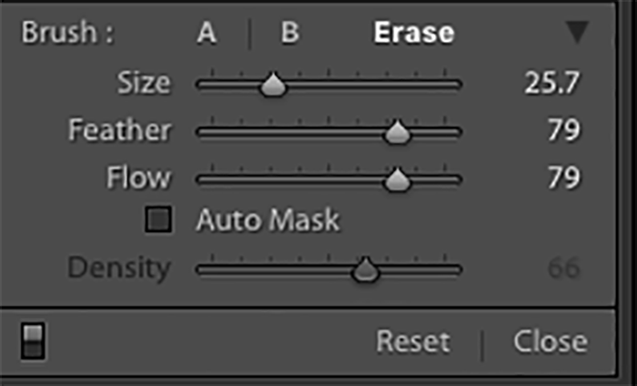 Screenshot showing how to use Lightroom's Adjustment Brush to Get Rid of Moiré Patterns