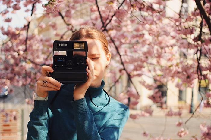 una niña tomando fotos con una cámara Polaroid debajo de los cerezos en flor