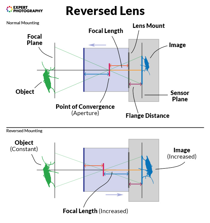 a diagram showing how a reversed lens works