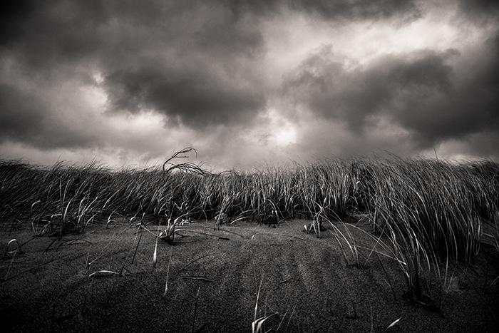 moody black and white landscape shot