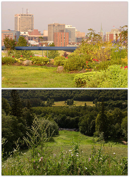 A diptych of two different style landscape photos
