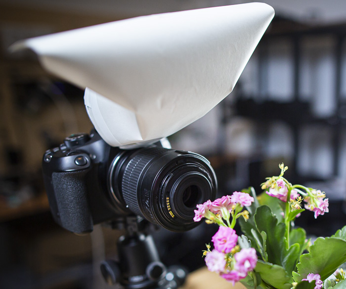 A DSLR fitted with a DIY macro diffuser