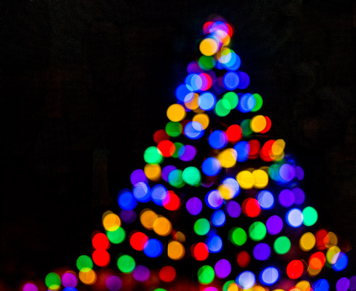 Abstract photo of a Christmas tree