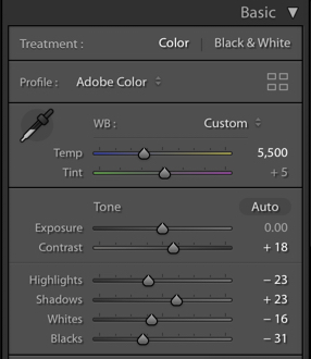 A screenshot of using the basic panel in Lightroom