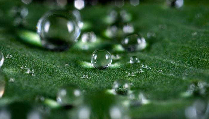 Macro photo of waterdrops on a leaf