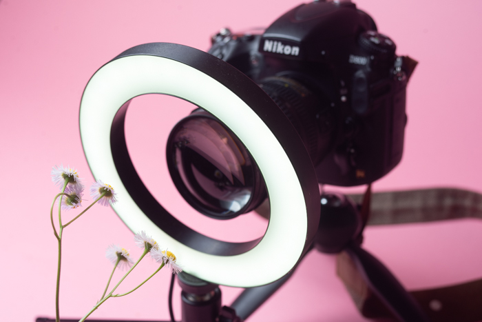 A camera with fitted macro filter taking an image of a flower