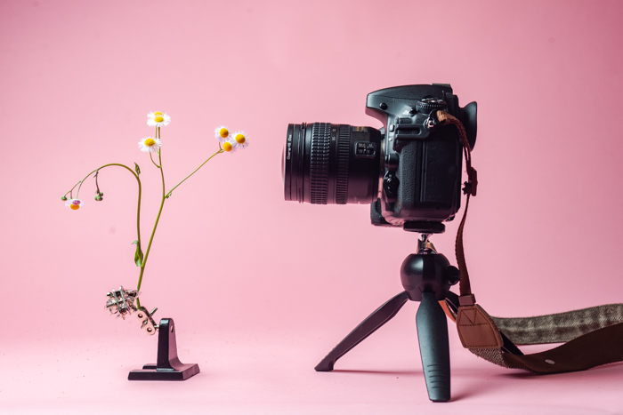 Photo of a DSLR camera on a tripod using close-up filters to take a picture of a flower