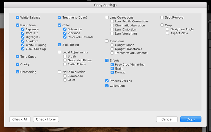 A screenshot of copy settings in Lightroom