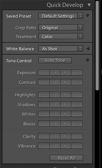 A screenshot of the quick develop module in Lightroom