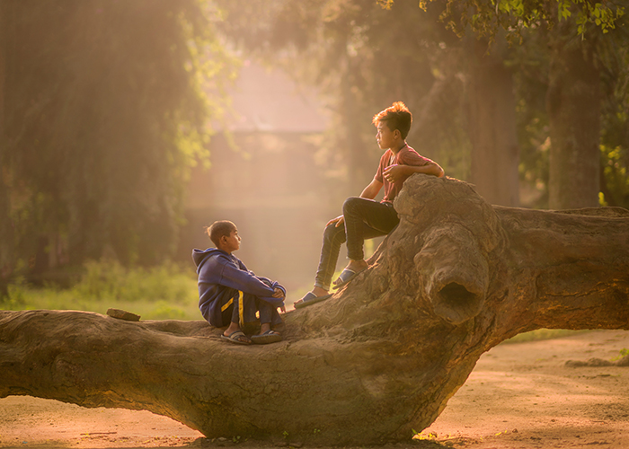 photo of two kids sitting on a huge tree trunk in the sunlight