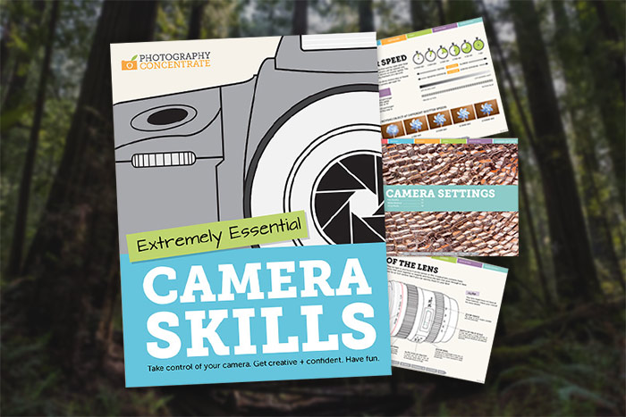 Extremely Essential Camera Skills by Photography Concentrate