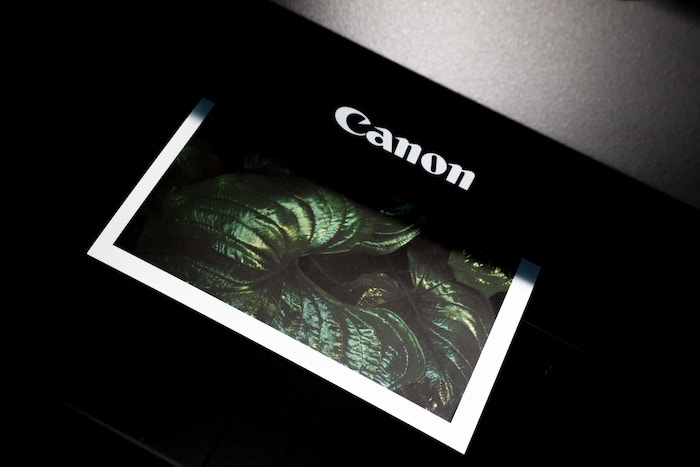 A Canon printer printing a photo of leaves