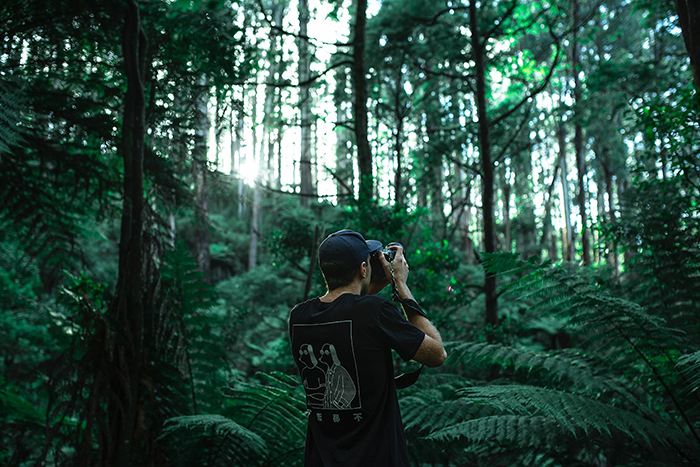 A man shooting photos in a green forest