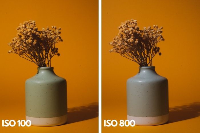 Diptych of a vase of flowers at different iso settings