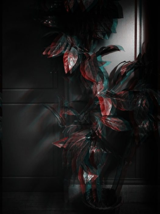 glitchy photo of a house plant