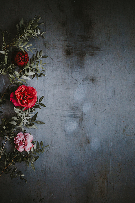 Red roses against a scratchy dark background