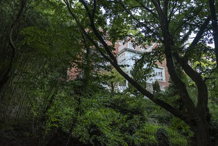 A building seen through trees