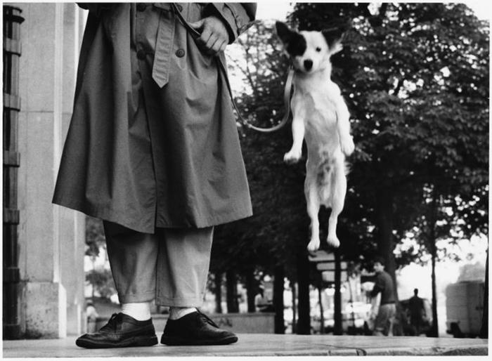 Paris, 1989. Photo by Elliott Erwitt
